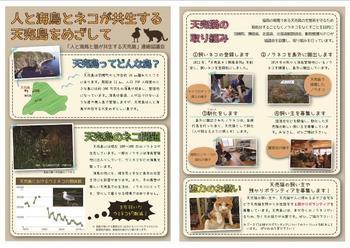 2015フェスティバル小冊子4-5.jpg
