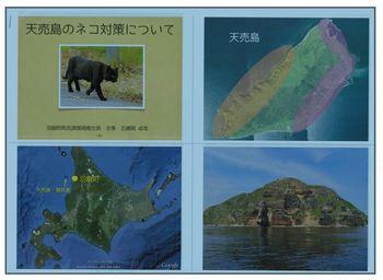 天売島.JPG